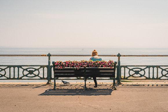 Flowers on Hove Promenade