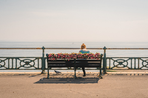 Flowers on Hove Prom