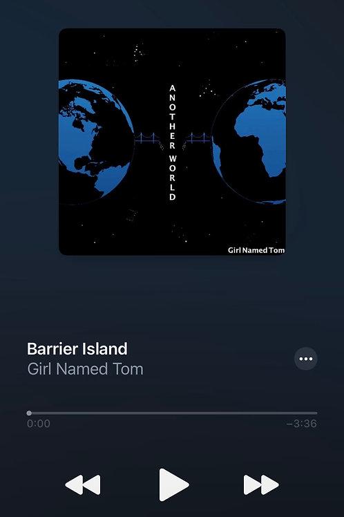 """Barrier Island"""