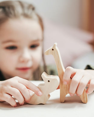 girl-with-wooden-toys-3662945_edited.jpg