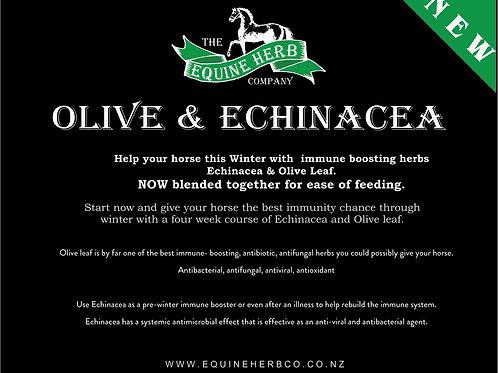 Echinacea + Olive Leaf 1kg