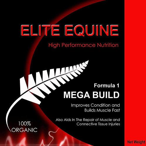 Elite Equine Mega Build 2.1 kg