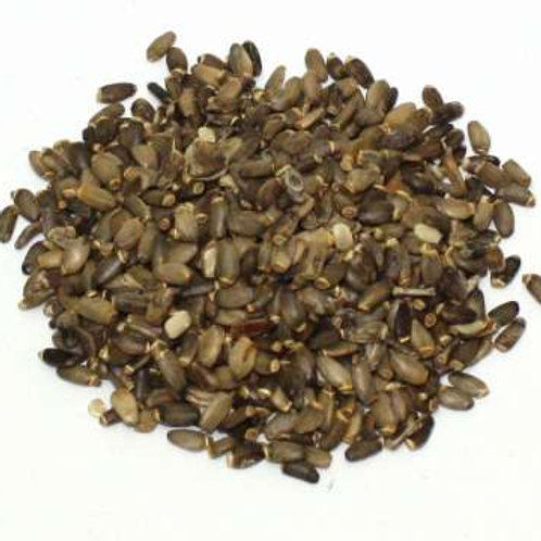 St Mary's Thistle Seeds