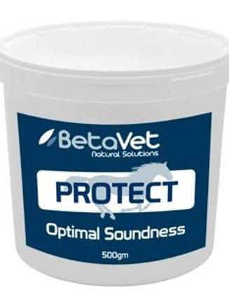 BetaVet Protect Powder 500gm