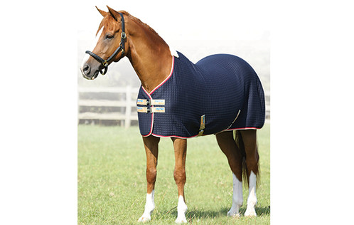 Premier Equine Premtex Cooler Rug Steed Health Saddlery Horse Riding And Supplies