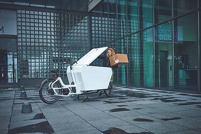 URBAN ARROW© Cargo XL Alubox 02.jpg