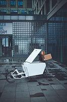 URBAN ARROW© Cargo XL Alubox 01.jpg