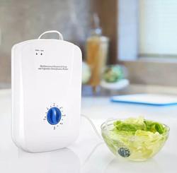 Portable Ozone in home Unit
