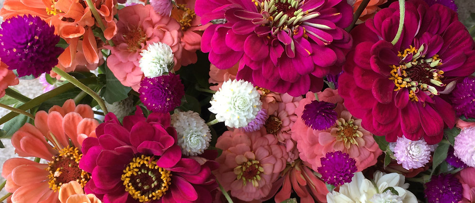 2021 Early+Late Season Flower Share--DELIVERY