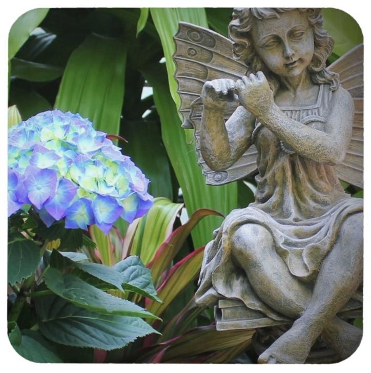Hydrangeas with Fairy