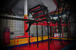BODY WEIGHT STATION