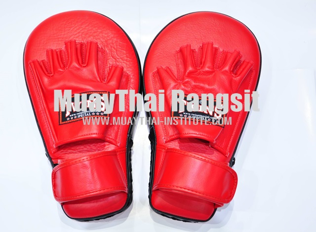 Deluxe Punching Mitts