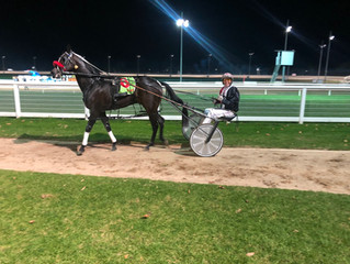 A huge night for locals at Swan Hill Trots