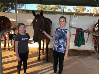 Bendigonians clean up at Swan Hill trots !