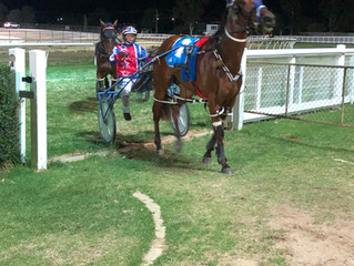 Burnaholeinmypocket  cruises  to  victory  in  Swan  Hill