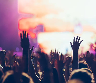 picture-of-party-people-at-music-festiva