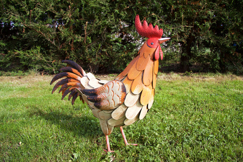 Chloe The Country Chicken