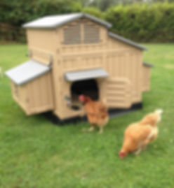 Large plastic chicken coop