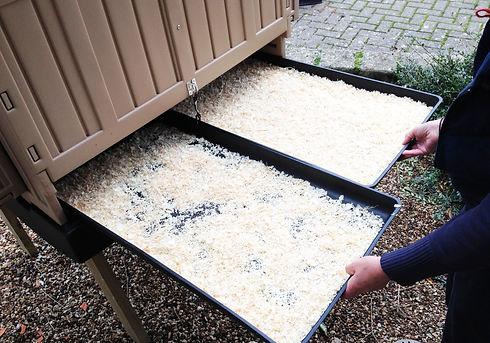 coop trays.jpg