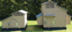 Large & Standard plastic chicken coops