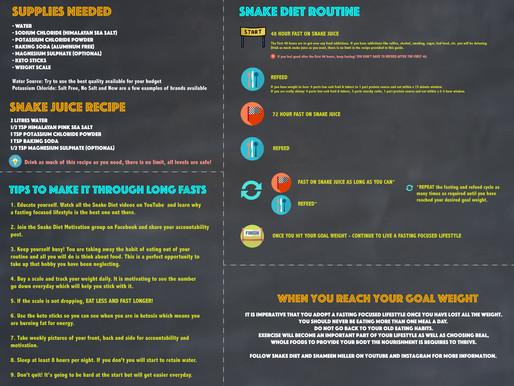 Snake Diet Quickstart Guide