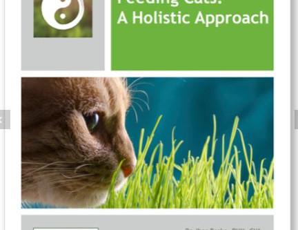 A holistic cat food recipe book