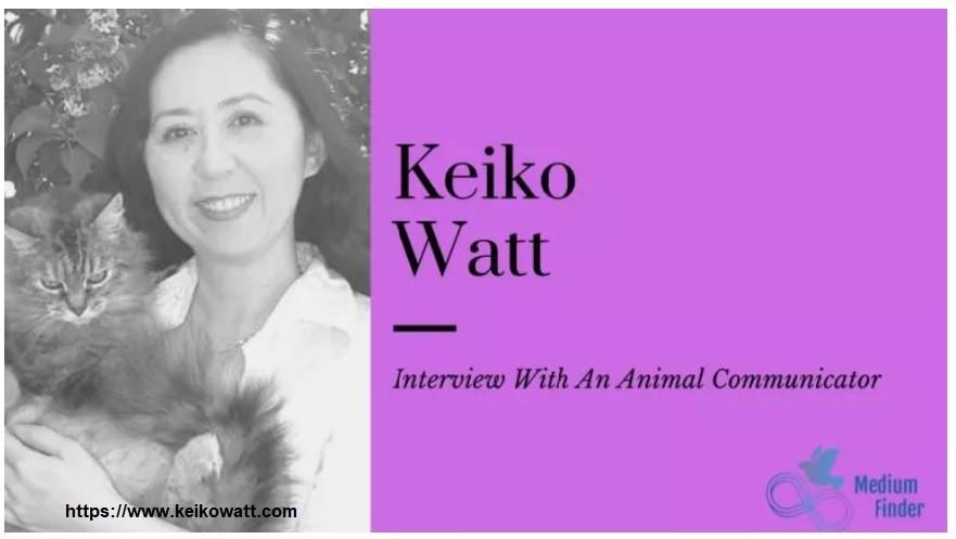 animal communicator Keiko Watt mediumfinder interview