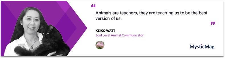 Animal Comunicator Keiko Watt with black kitty - MysticMag