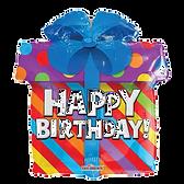 Birthday%20Present_edited.png