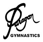ParagonT-Shirt logo no background.png