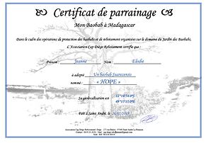 Photo Certif Hope.png