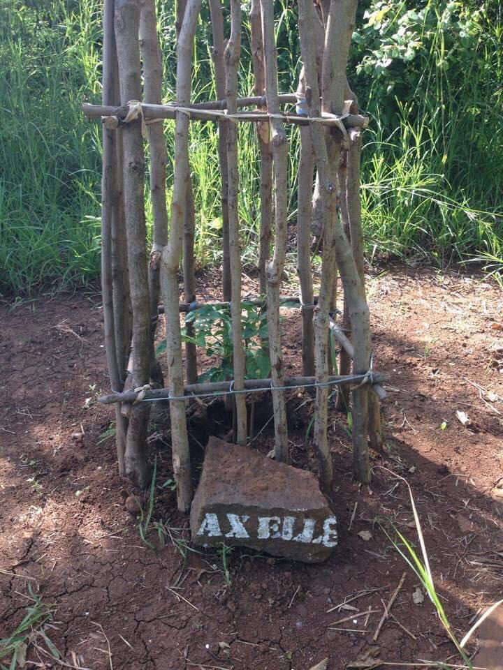 Axelle.jpg