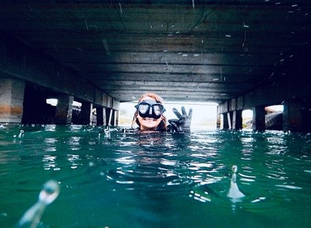 What Happens During Underwater Bridge Inspections? Interview With Alex Mocyunas