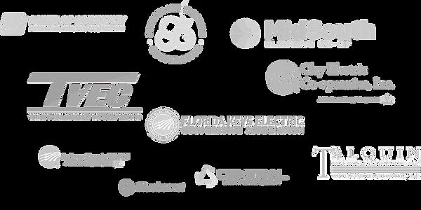 logo of coop using drones.png