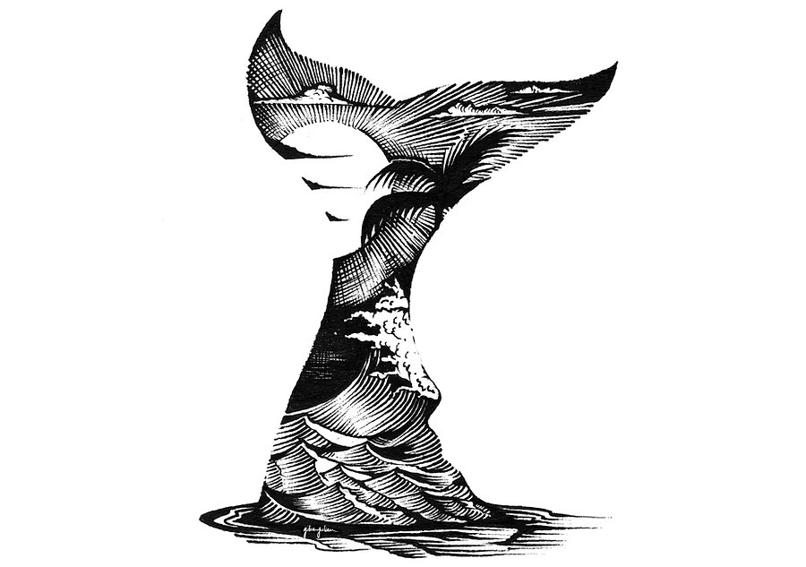 whaletail_gibranjulian.jpg