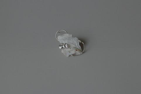 15 shell earring in sterling silver - hkd $480