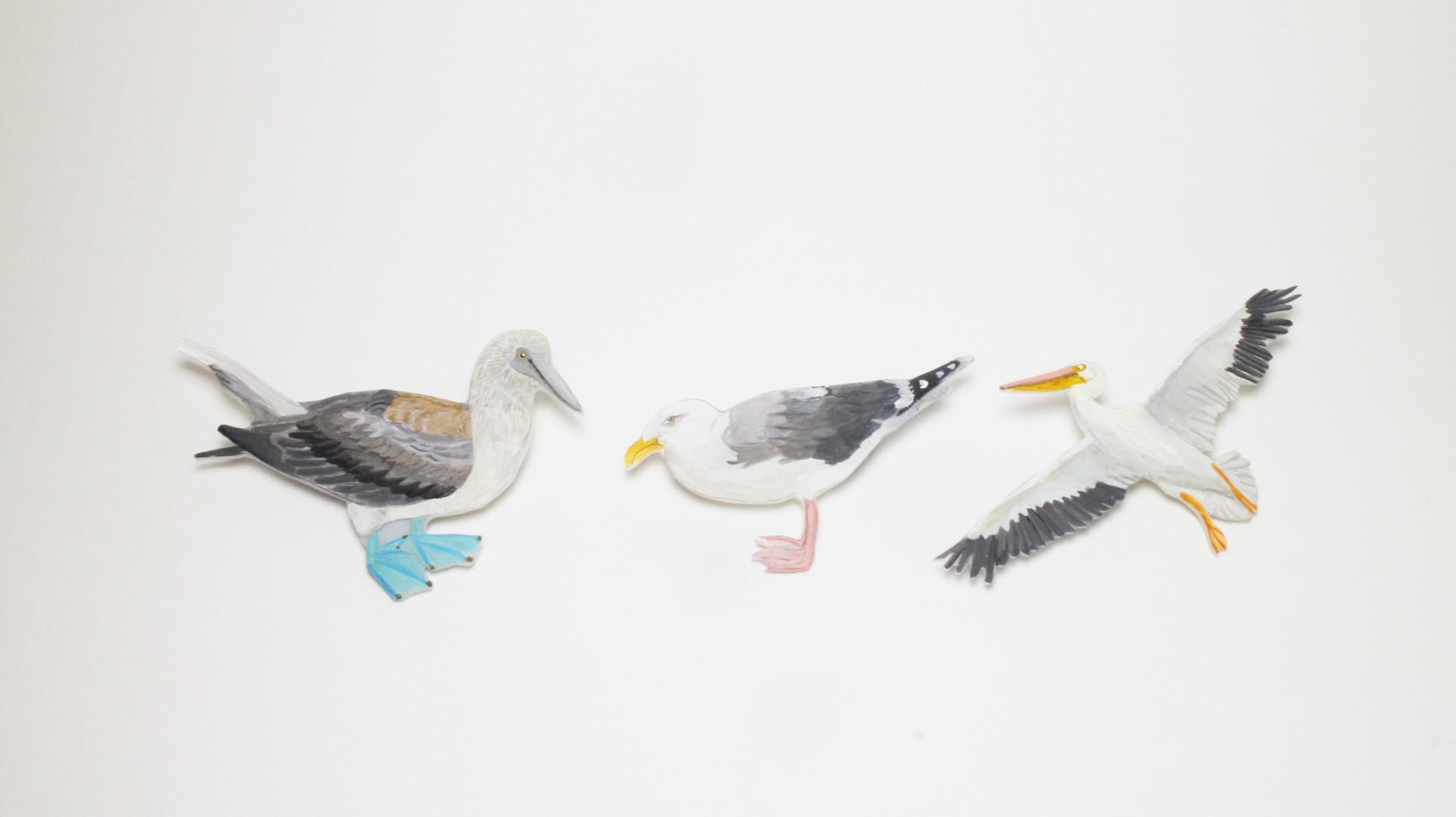 bird-001.jpg
