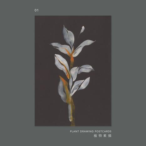 plantdrawing-postcard-01.jpg