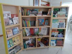 Librero y los libros