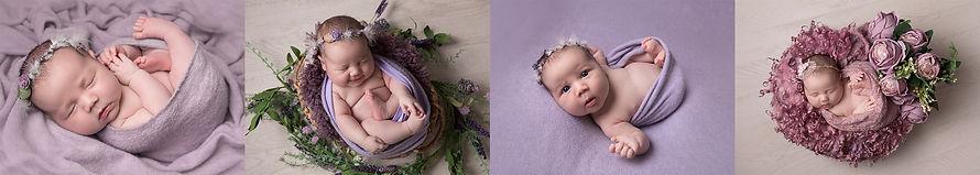Newborn Mini Session - Purple.jpg