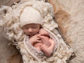 Henry: Newborn Photoshoot