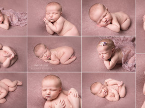 Willow: Newborn Photoshoot