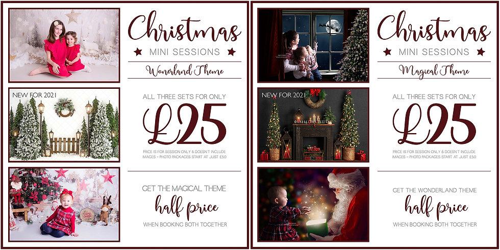 Christmas 2021 Theme Ads copy.jpg