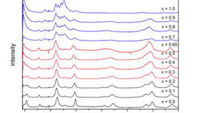 Raman Whitepaper: Raman-spectroscopic study of magnetic interactions in multiferroic ionic crystals