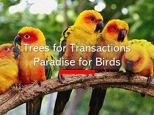 Trees for Transactions.jpg