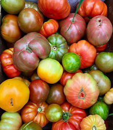 Our Heirloom Tomato Mix.