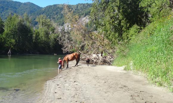 river and muddy 009.JPG