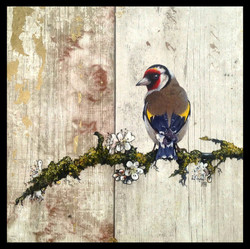 Goldfinch £350 (Sold)