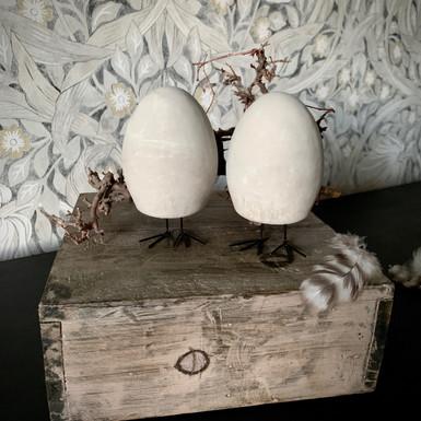 Ägg på fot