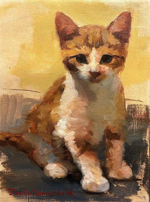 Tiny Kitten II